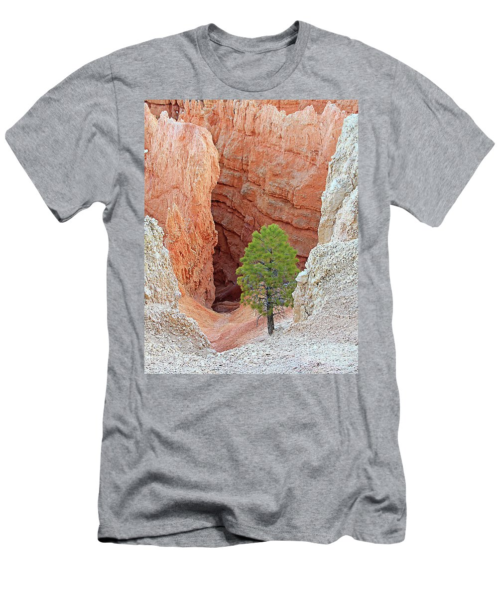 Bryce National Park Men's T-Shirt (Athletic Fit) featuring the photograph Lone Tree At Bryce National Park by Jack Schultz