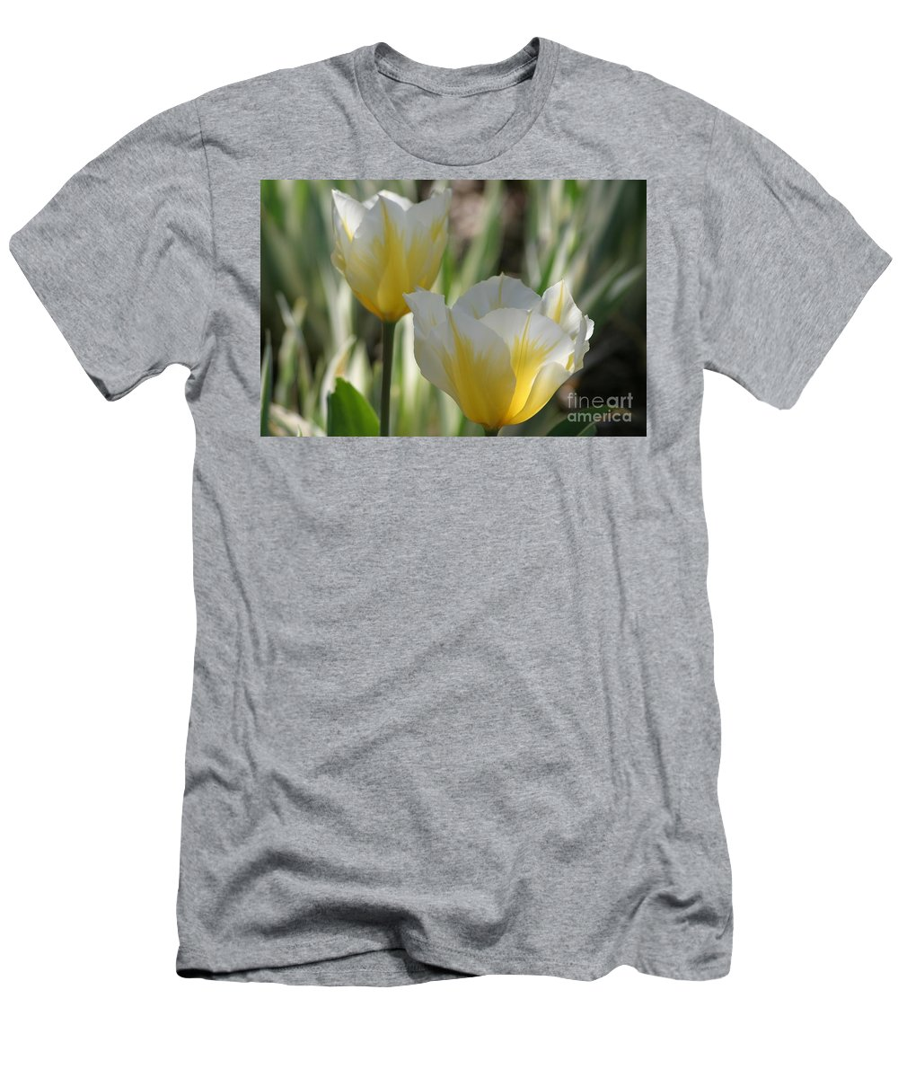 Tulips Men's T-Shirt (Athletic Fit) featuring the photograph Magical Morning by Living Color Photography Lorraine Lynch