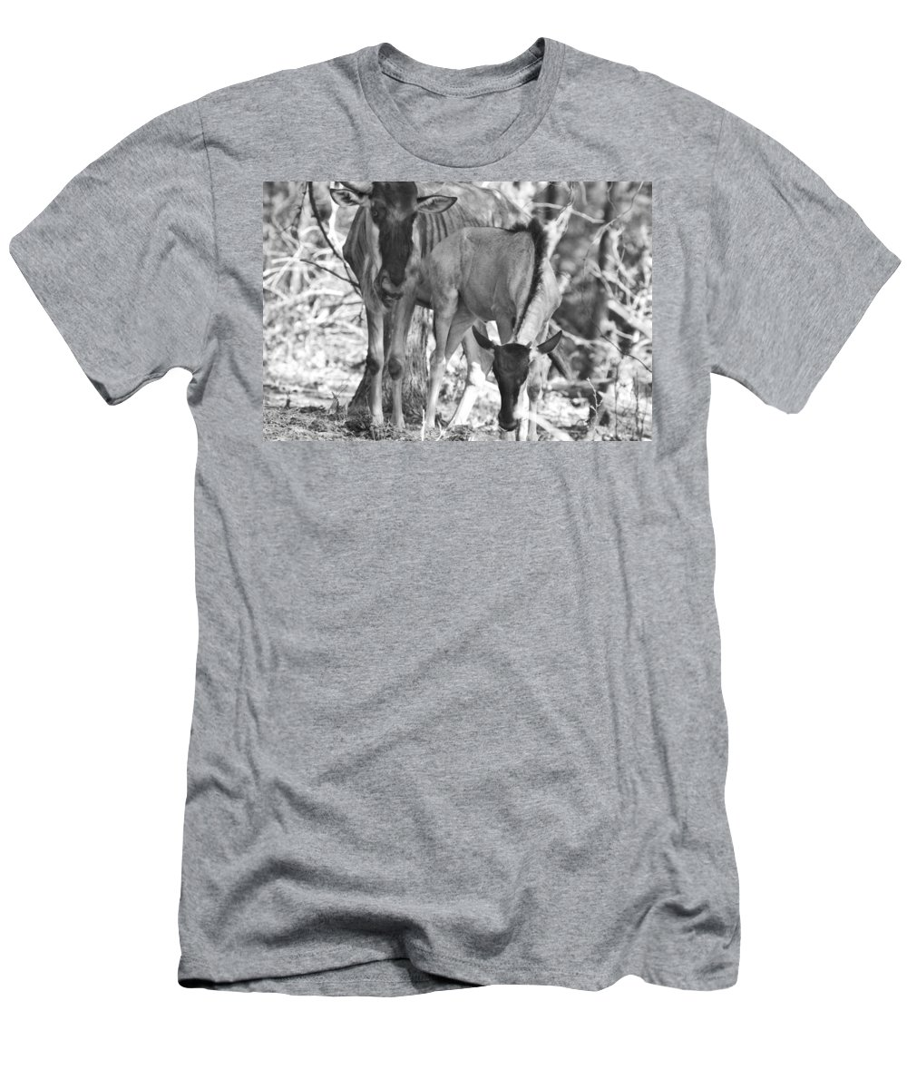 Blue Wildebeest Men's T-Shirt (Athletic Fit) featuring the photograph Mother And Child V4 by Douglas Barnard