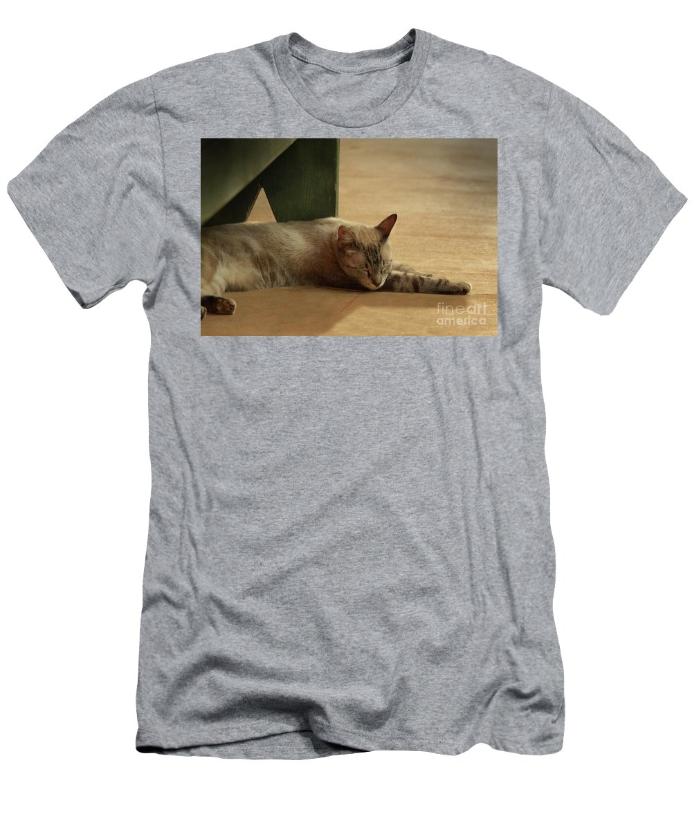 Cat Men's T-Shirt (Athletic Fit) featuring the photograph Naping In The Shade by Kim Henderson