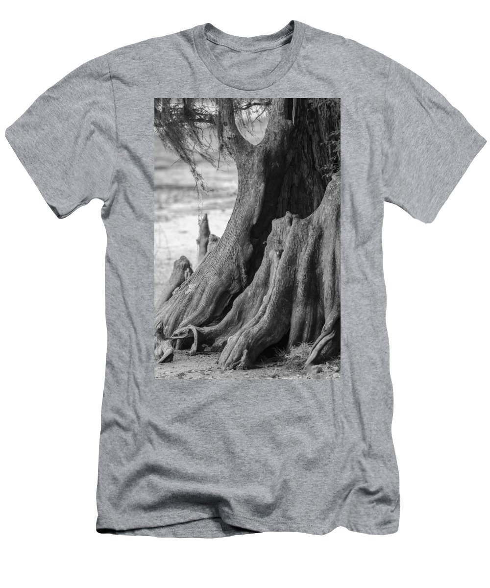 bald Cypress Men's T-Shirt (Athletic Fit) featuring the photograph Natural Cypress by Carolyn Marshall
