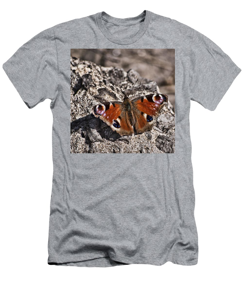 Peacock Butterfly Men's T-Shirt (Athletic Fit) featuring the photograph Peacock Butterfly by Steve Purnell