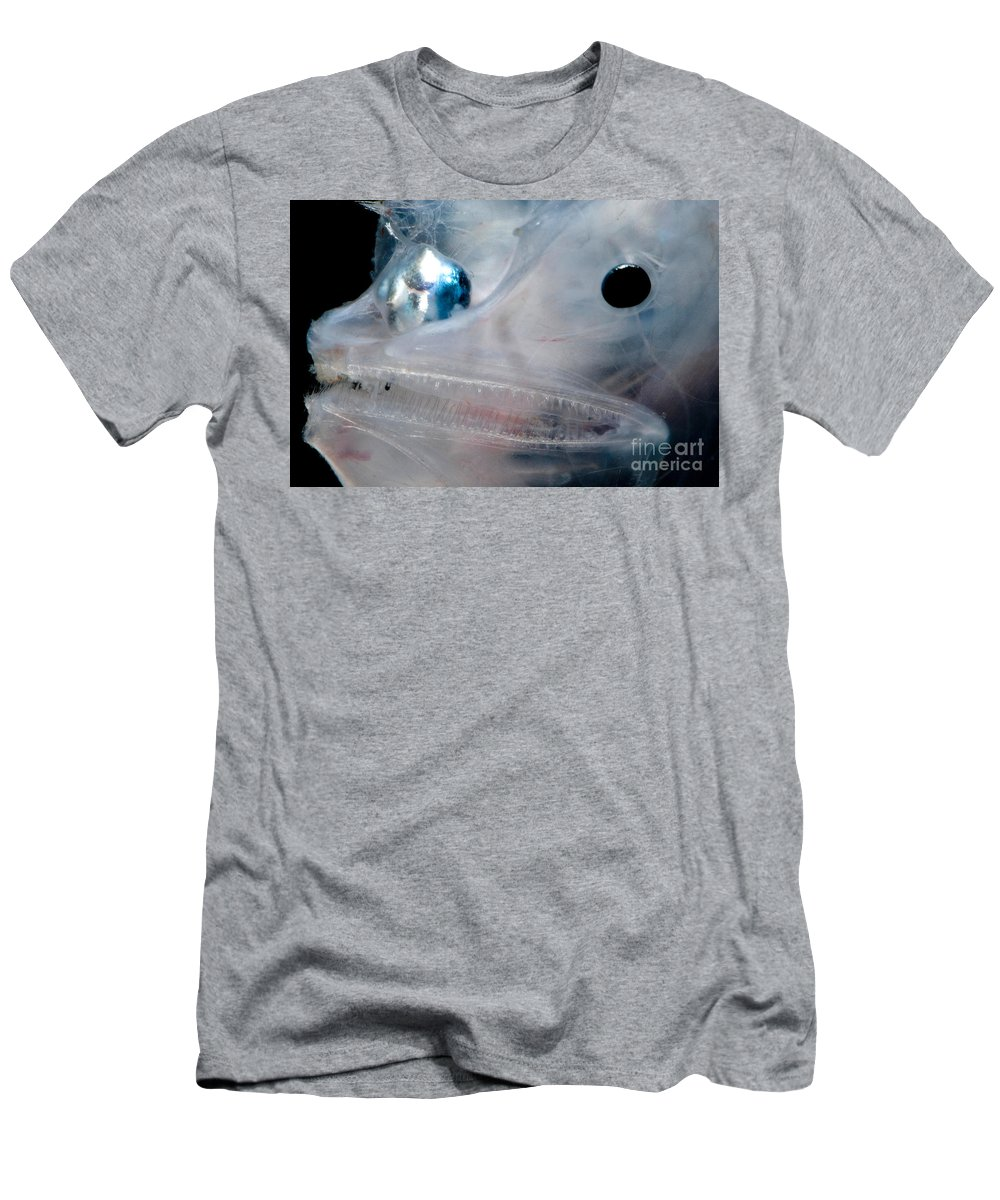 Anglerfish Men's T-Shirt (Athletic Fit) featuring the photograph Phantom Anglerfish by Dant� Fenolio