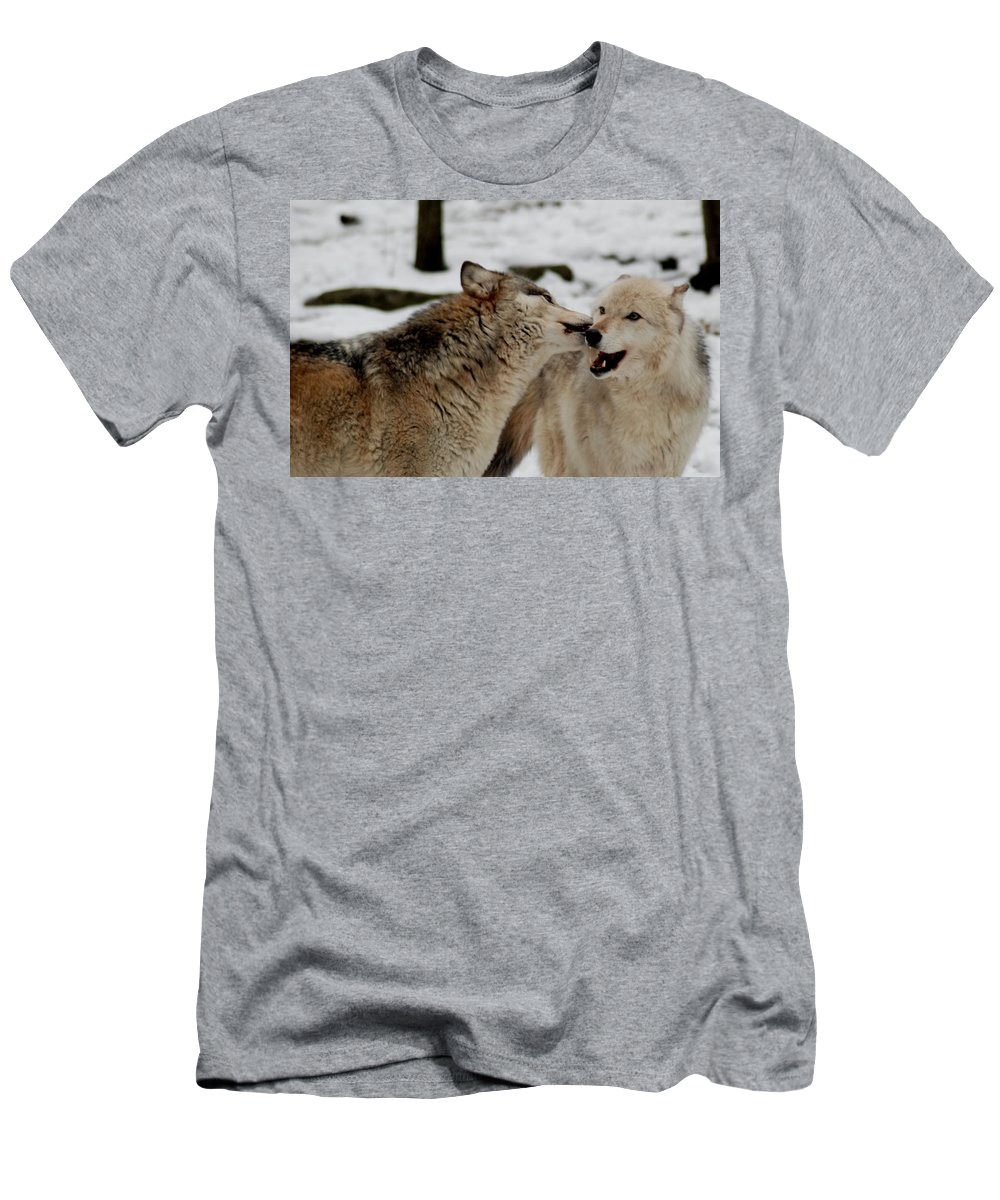 Wolf Men's T-Shirt (Athletic Fit) featuring the photograph Playful Wolves by Richard Bryce and Family