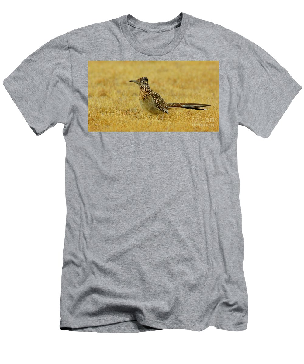 Animal Men's T-Shirt (Athletic Fit) featuring the photograph Roadrunner Hen by Robert Frederick