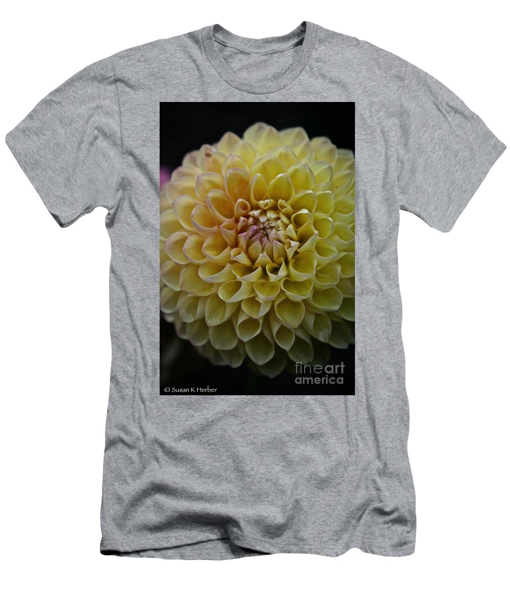 Dahlia Men's T-Shirt (Athletic Fit) featuring the photograph Robin Hood Yellow by Susan Herber