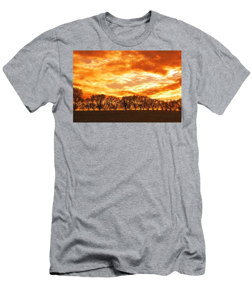 Canada Men's T-Shirt (Athletic Fit) featuring the photograph Row Of Trees by Dean Muz