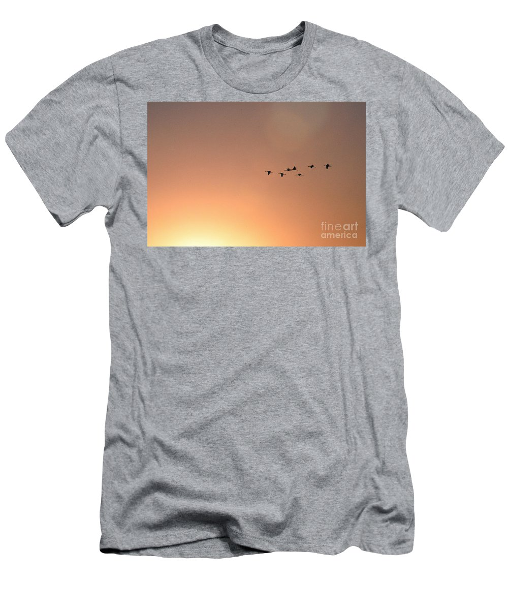 Crane Men's T-Shirt (Athletic Fit) featuring the photograph Sandhill Cranes To The Sun by David Arment