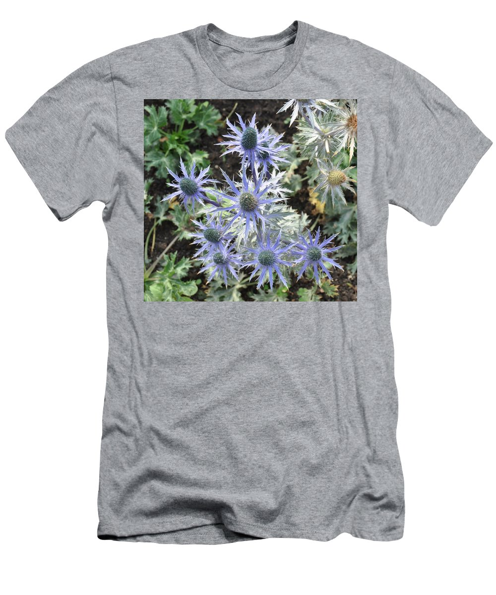 Flower Men's T-Shirt (Athletic Fit) featuring the photograph Sea Holly by Rich Bodane