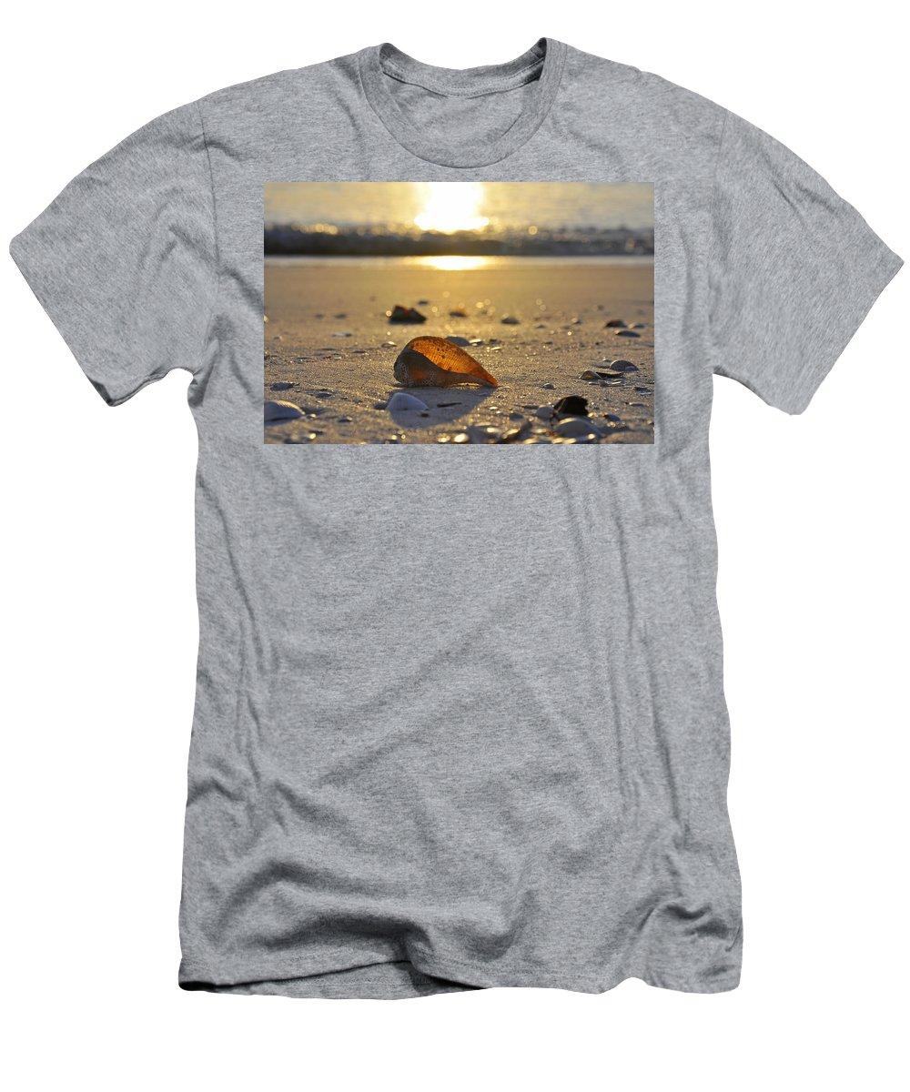 Sea Shell T-Shirt featuring the photograph Seashells and Sunshine by Christine Stonebridge