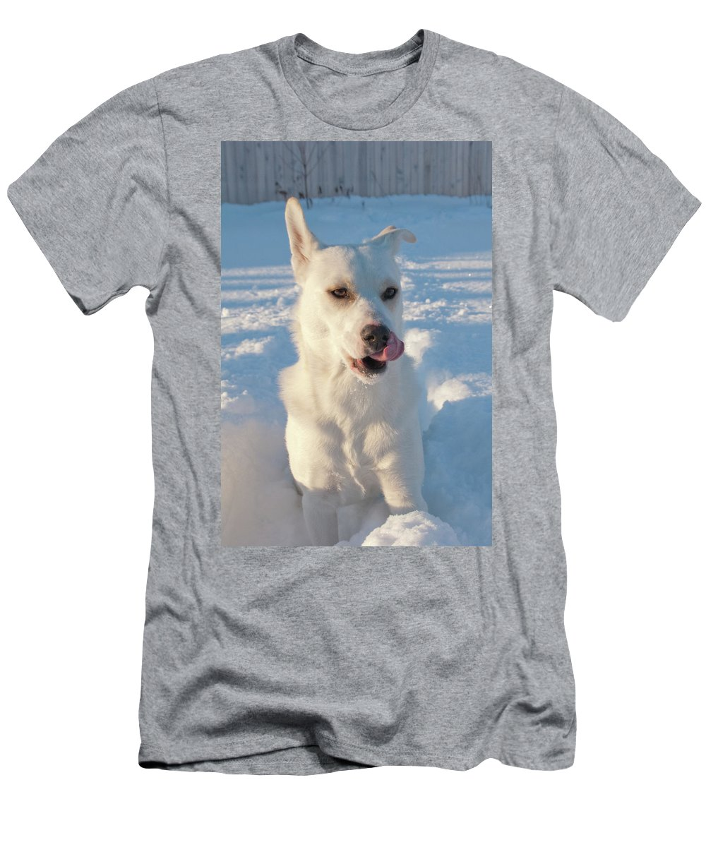 Dog Men's T-Shirt (Athletic Fit) featuring the photograph Snow Dog 0249 by Guy Whiteley
