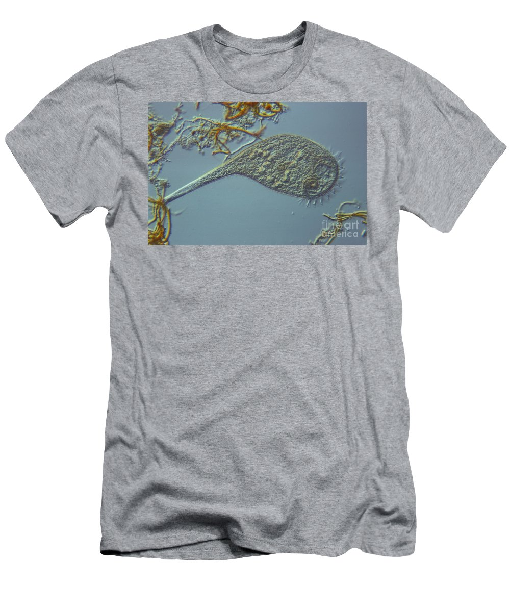 Science Men's T-Shirt (Athletic Fit) featuring the photograph Stentor Lm by M. I. Walker