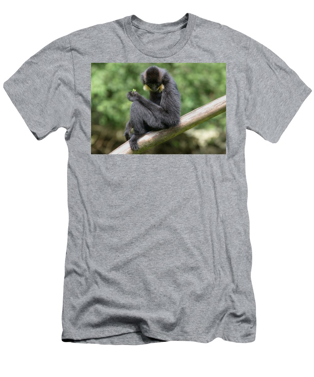 Black Men's T-Shirt (Athletic Fit) featuring the photograph Stopping For Lunch by Ian Middleton