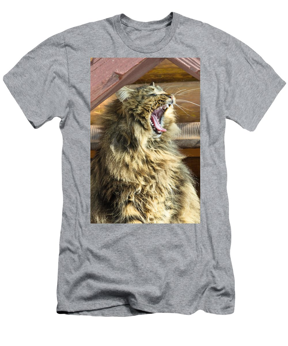 Bay Men's T-Shirt (Athletic Fit) featuring the photograph The Cat Who Loves To Sing by Michael Goyberg