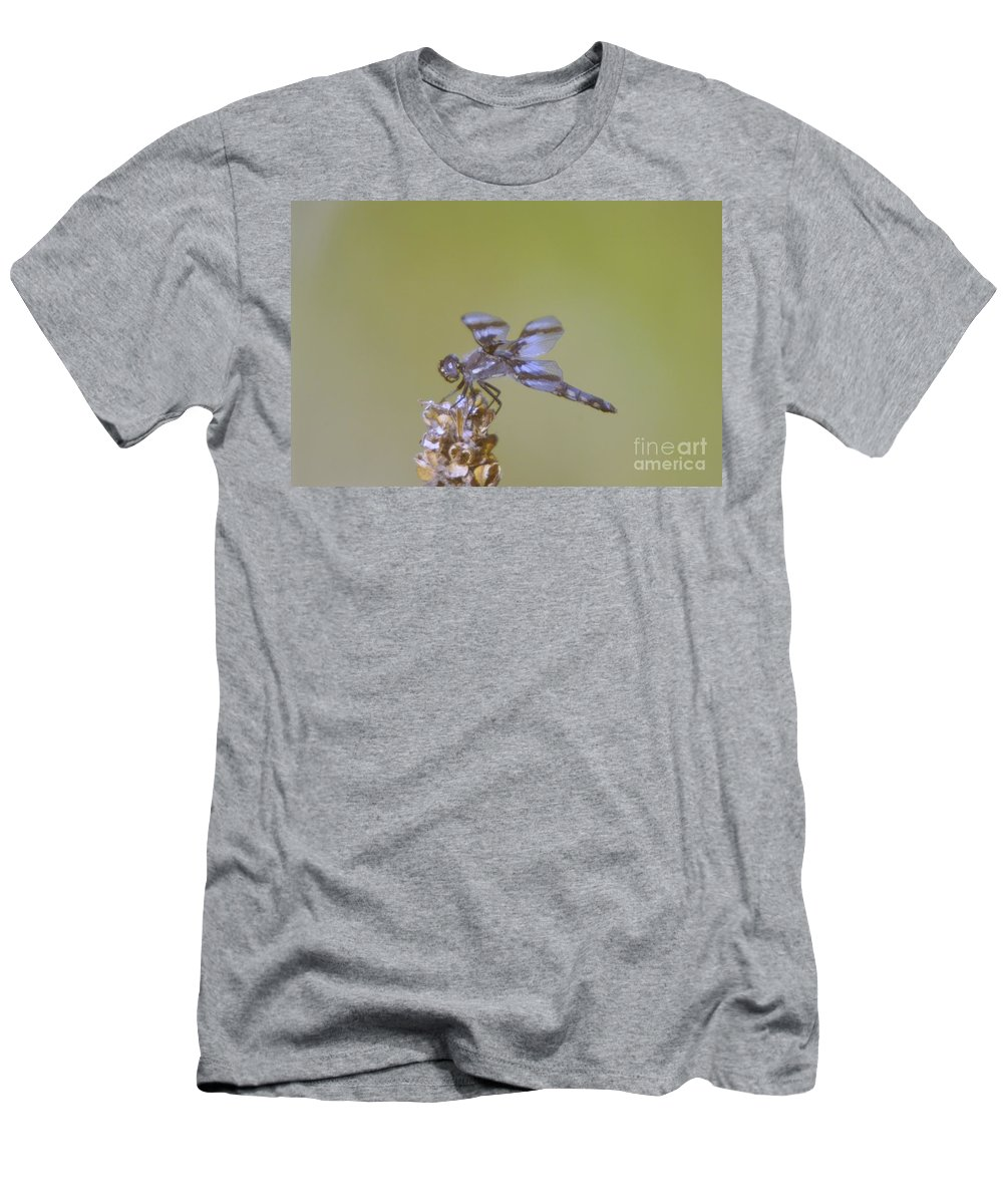 Dragonfly Men's T-Shirt (Athletic Fit) featuring the photograph The Wounded Rests by Jeff Swan
