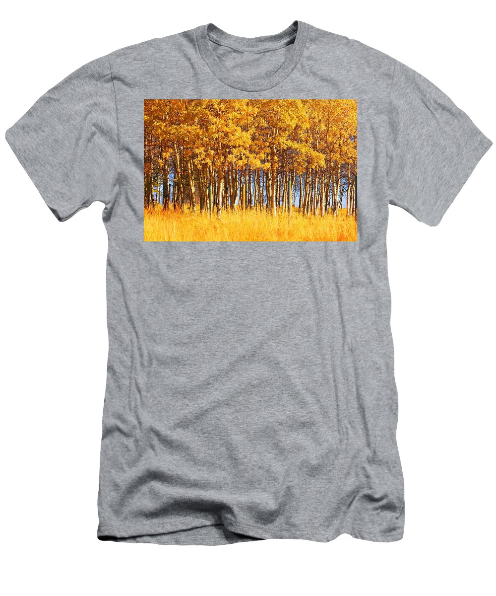 Autumn Men's T-Shirt (Athletic Fit) featuring the photograph Trees In Autumn by Don Hammond
