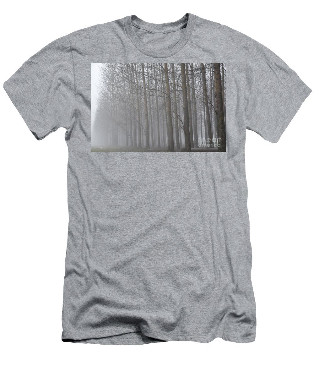 Trees Men's T-Shirt (Athletic Fit) featuring the photograph Trees In The Fog by Mats Silvan