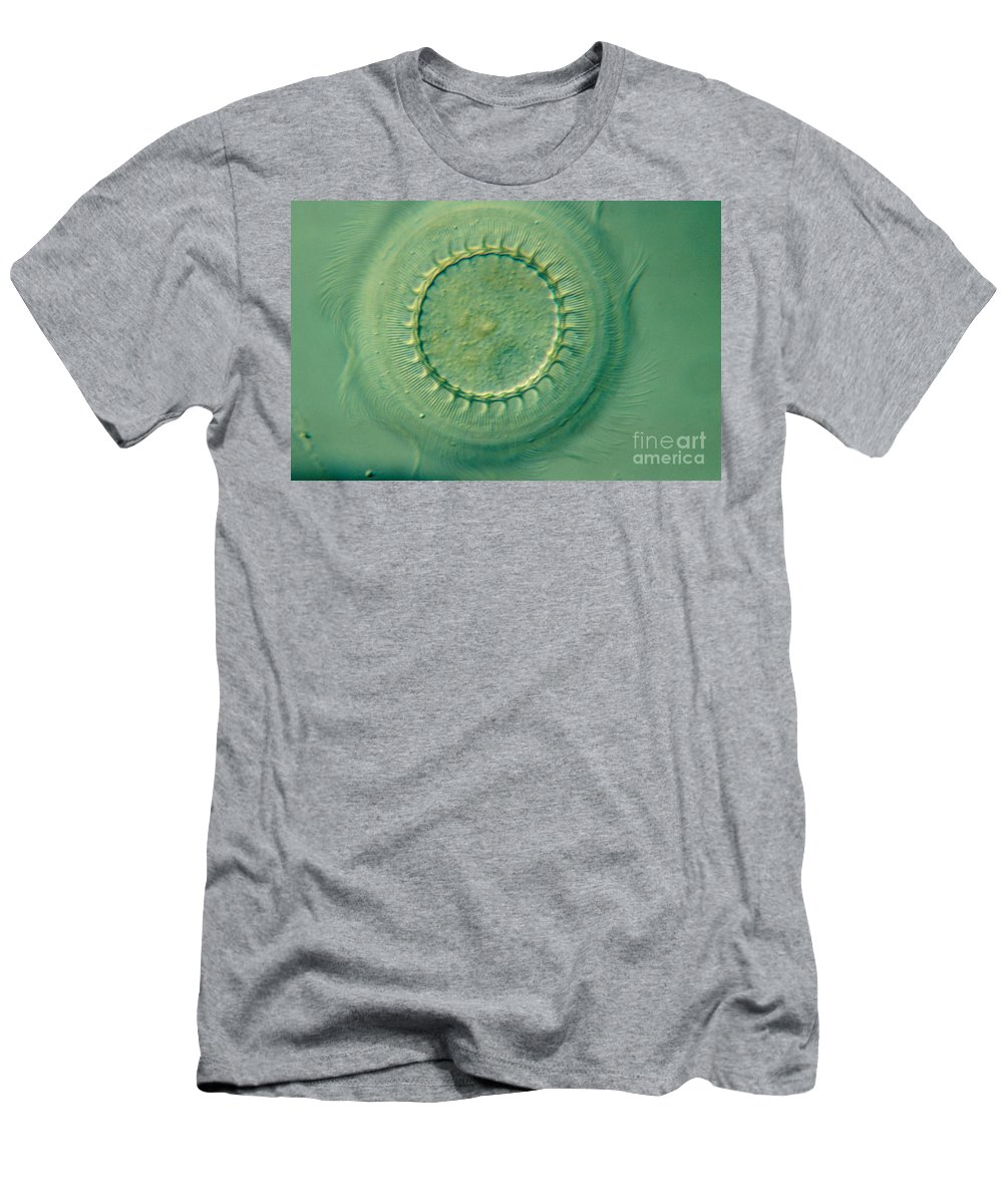 Ciliate Men's T-Shirt (Athletic Fit) featuring the photograph Trichodina Sp by M. I. Walker