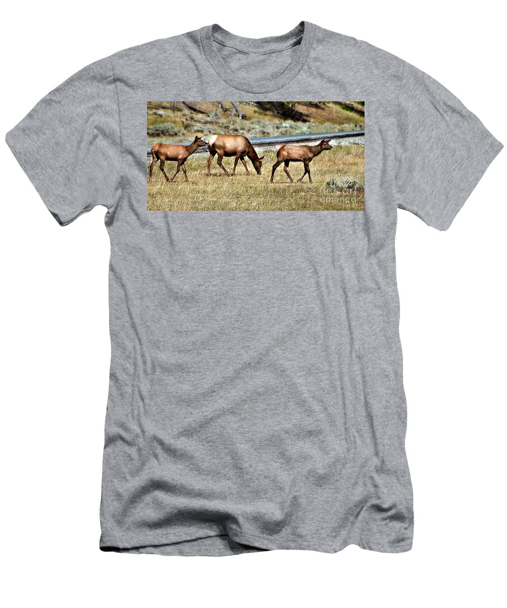 Animals Men's T-Shirt (Athletic Fit) featuring the photograph Twins And Mother by Robert Bales