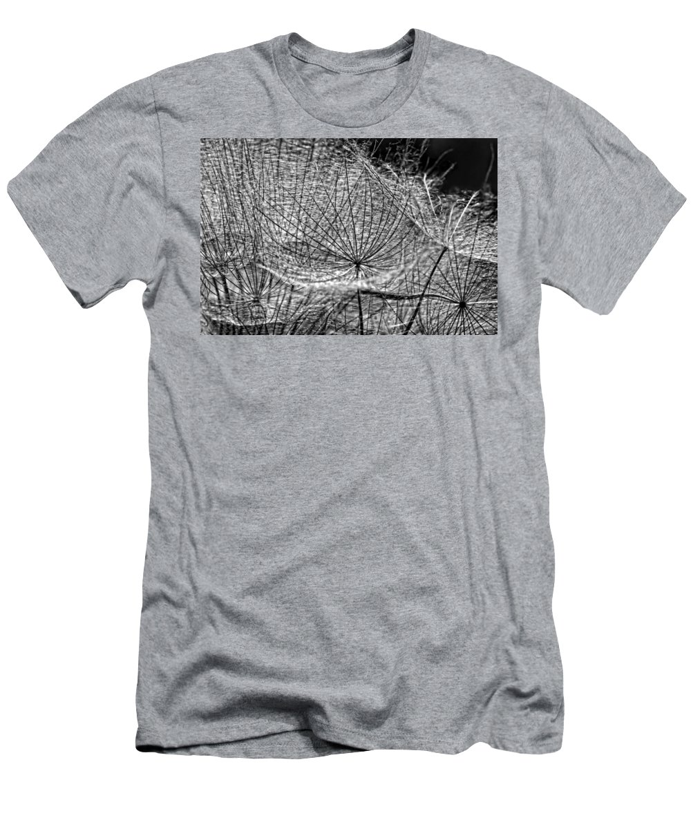 Asteraceae Men's T-Shirt (Athletic Fit) featuring the photograph Weed Wandering Monochrome by Steve Harrington