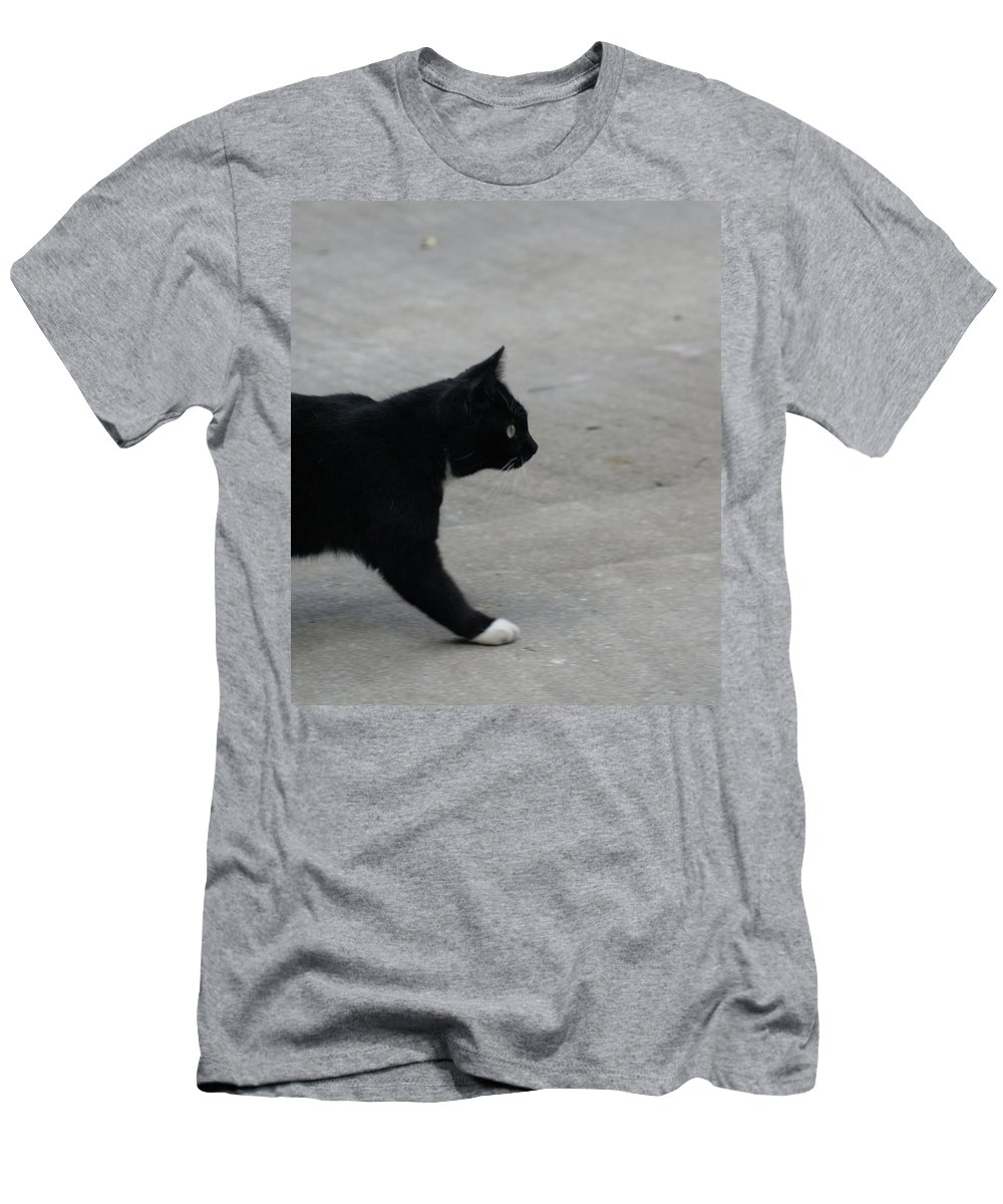 Cat Men's T-Shirt (Athletic Fit) featuring the photograph What Is Over There by Cathi Abbiss Crane