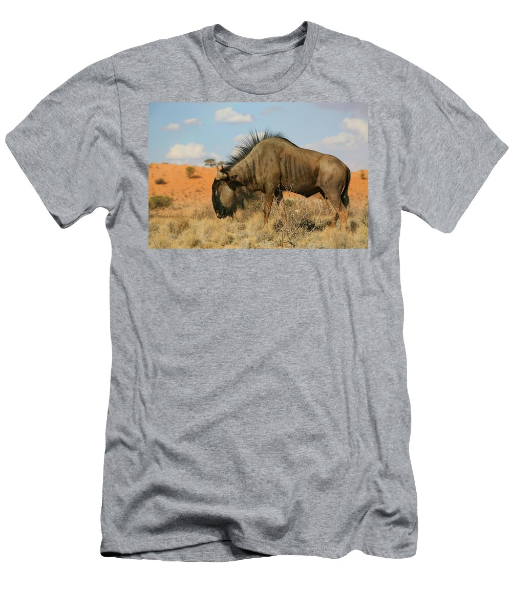 Wildebeest Men's T-Shirt (Athletic Fit) featuring the photograph Wildebeest by Bruce J Robinson