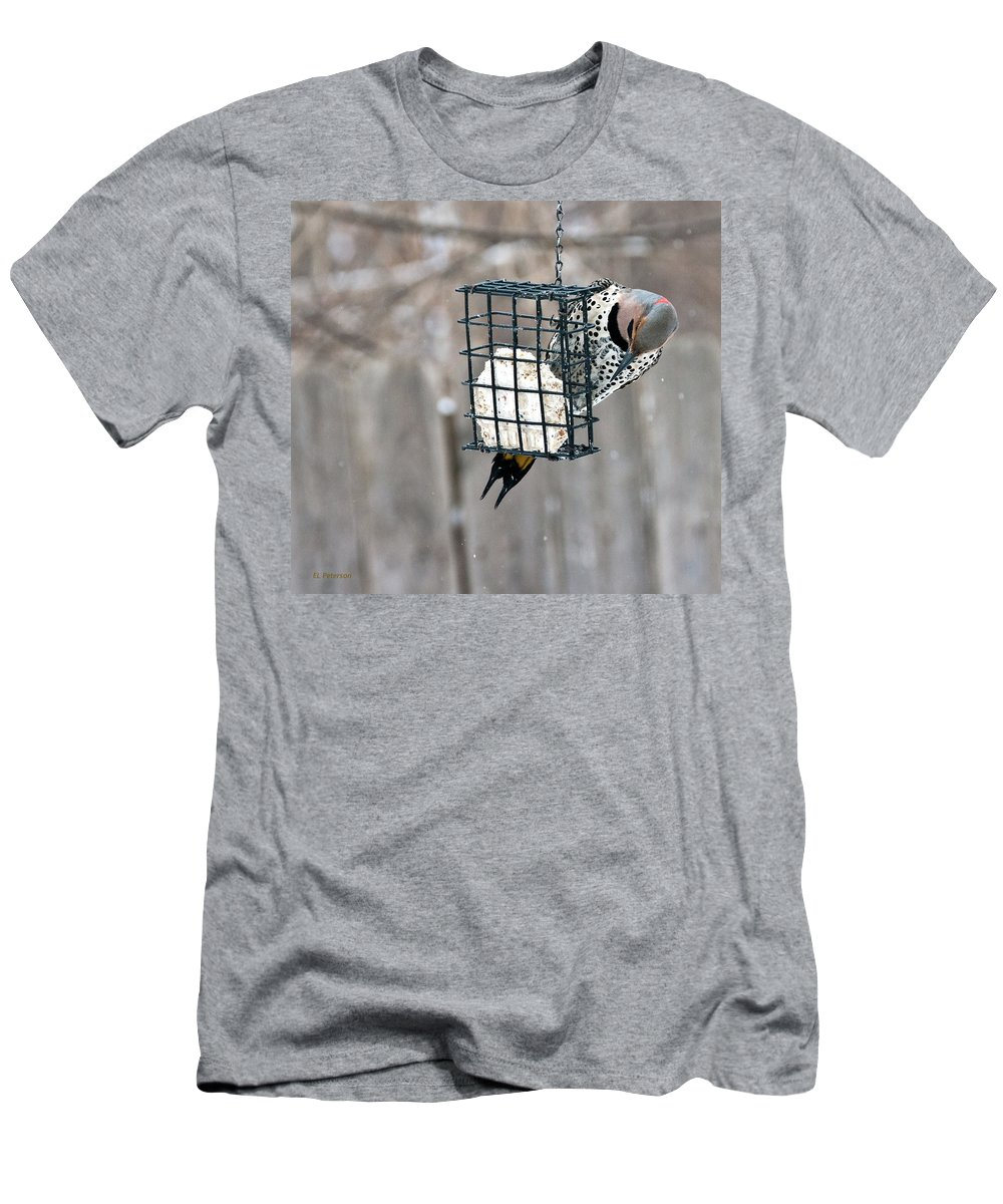 Yellow Shafted Northern Flicker Men's T-Shirt (Athletic Fit) featuring the photograph Winter Feeding by Edward Peterson