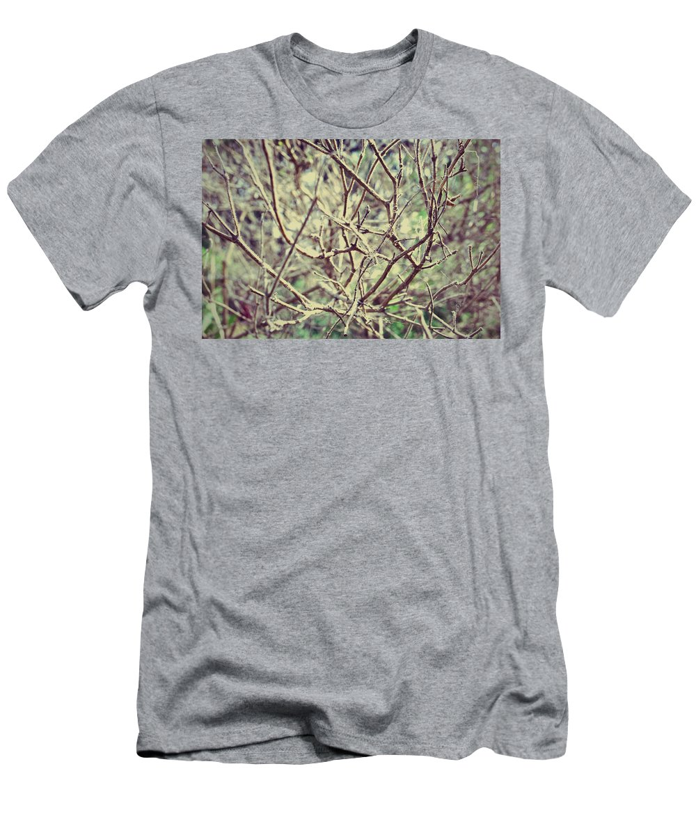Spring Dry Nature Flower Stems Branches Plants Men's T-Shirt (Athletic Fit) featuring the photograph Yet To Spring by Sumit Mehndiratta