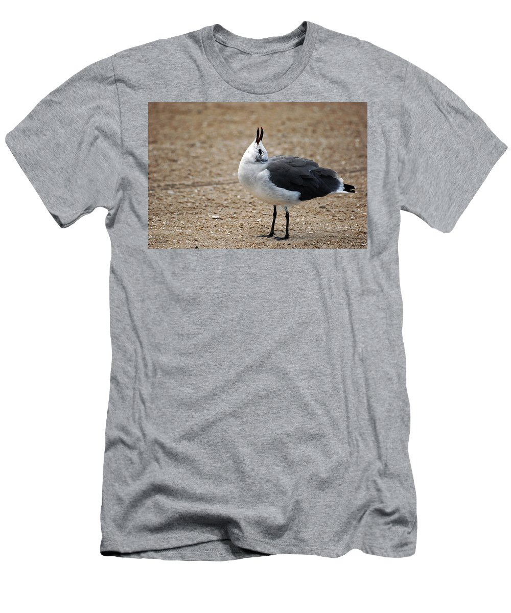 Laughing Gull Men's T-Shirt (Athletic Fit) featuring the photograph You Crack Me Up by Lori Tambakis