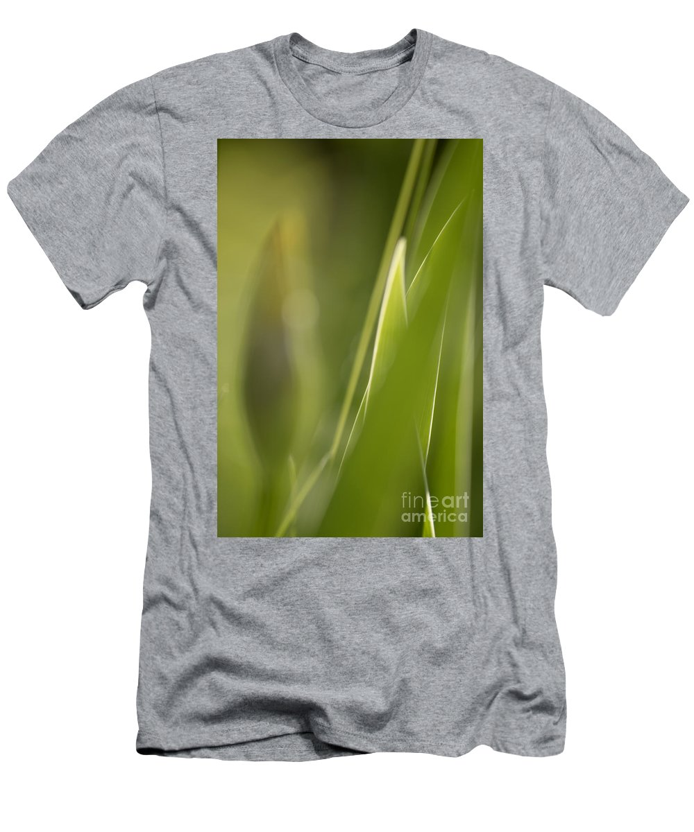 Iris Men's T-Shirt (Athletic Fit) featuring the photograph Abstract Iris Leaves And Buds by Michelle Himes