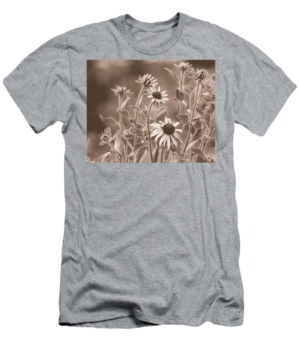 Black Eyed Susans Men's T-Shirt (Athletic Fit) featuring the photograph Black-eyed Susans by Mel Hensley