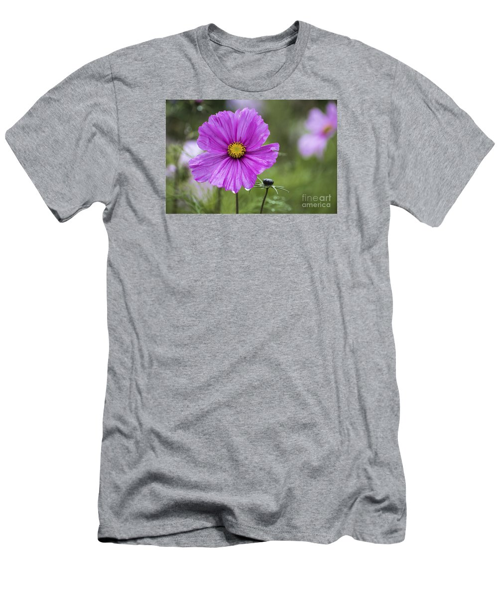 Cosmos Bipinnatus Men's T-Shirt (Athletic Fit) featuring the photograph Cosmos Flower by Sebastien Coell