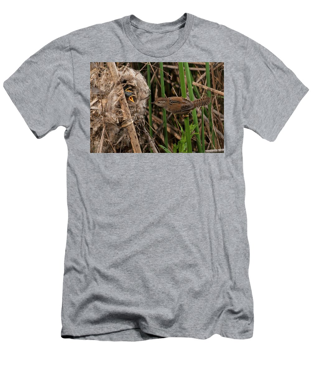 Portrait Men's T-Shirt (Athletic Fit) featuring the photograph Hungry Brood by Damon Calderwood