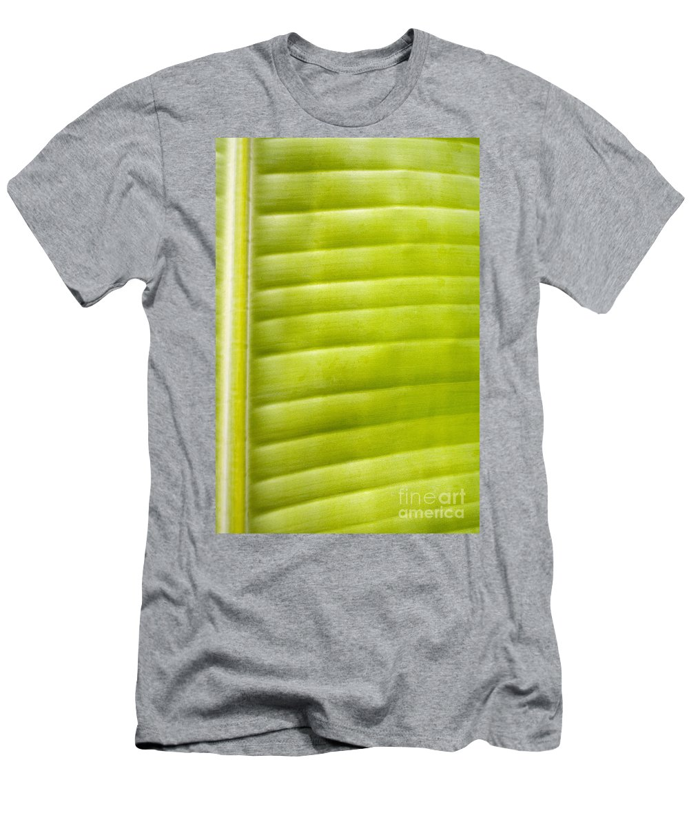 Botanical Men's T-Shirt (Athletic Fit) featuring the photograph Leaf Close-up by Tomas del Amo - Printscapes