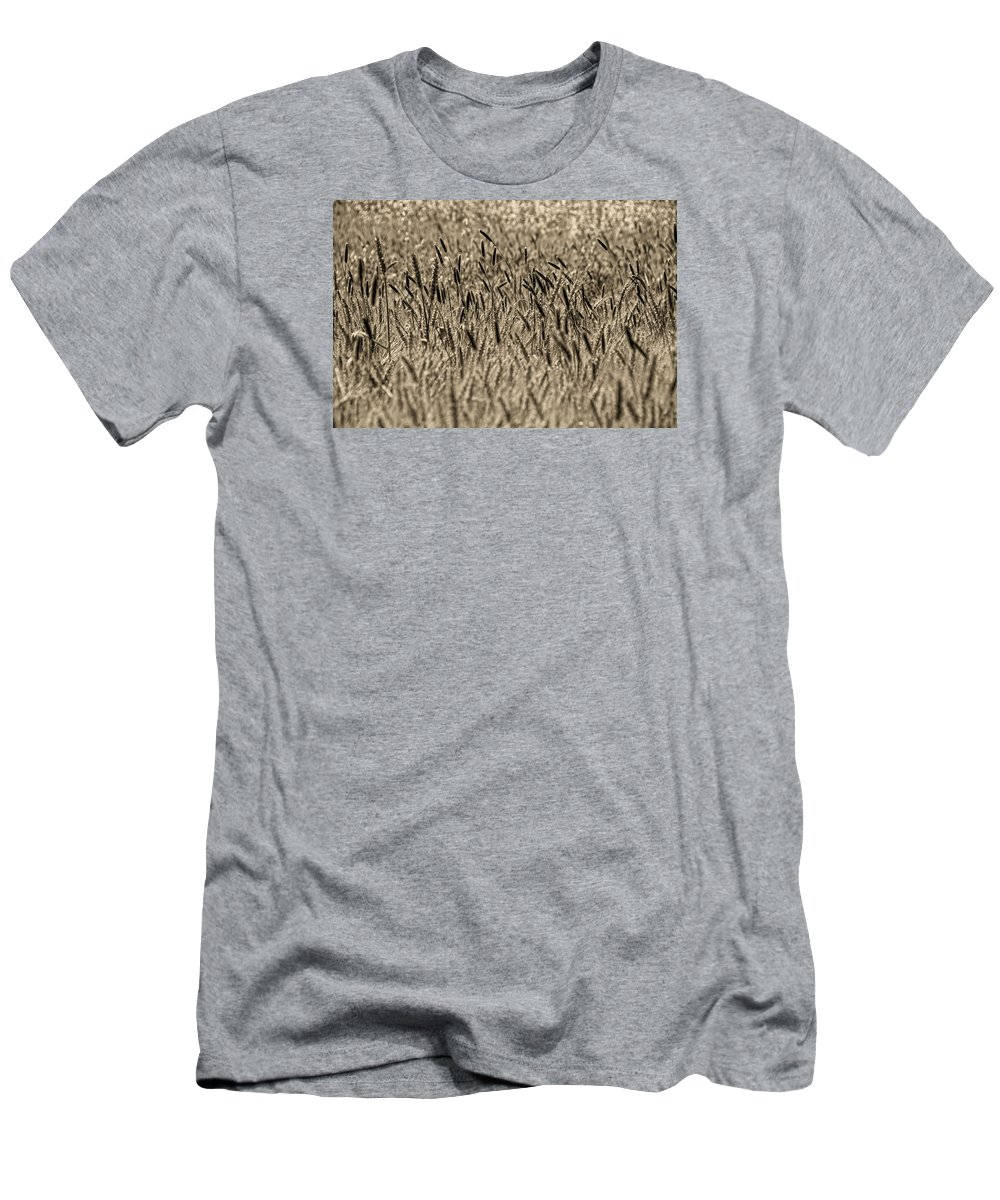 Men's T-Shirt (Athletic Fit) featuring the photograph Harvest Time by Deb Cohen