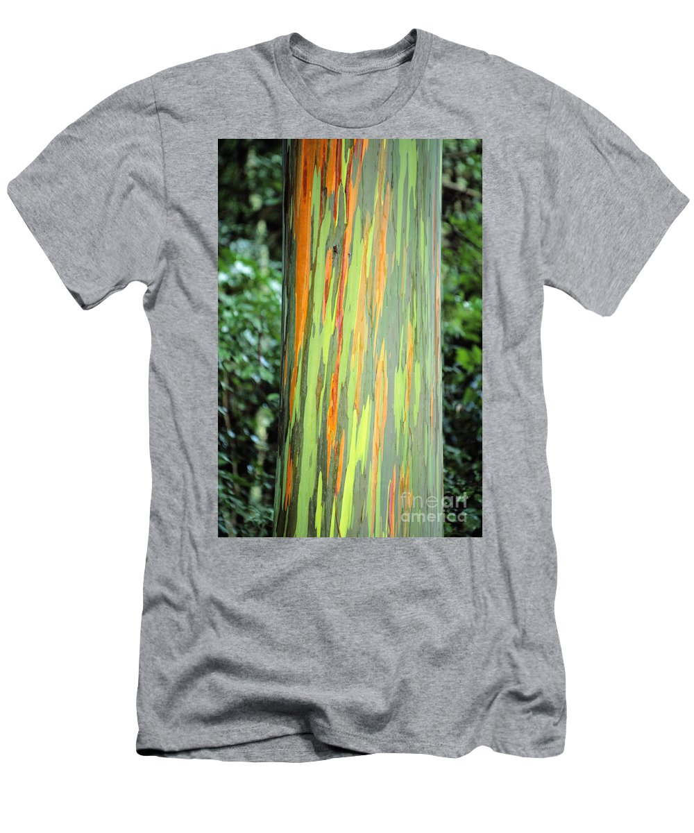 Beautiful Men's T-Shirt (Athletic Fit) featuring the photograph Rainbow Eucalyptus by Ron Dahlquist - Printscapes