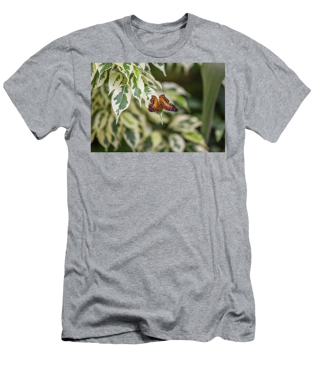 Anartia Amathea Men's T-Shirt (Athletic Fit) featuring the photograph Scarlet by Calazone's Flics