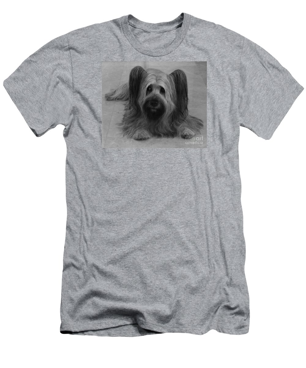 Dog Men's T-Shirt (Athletic Fit) featuring the photograph Tory by Heather Hennick