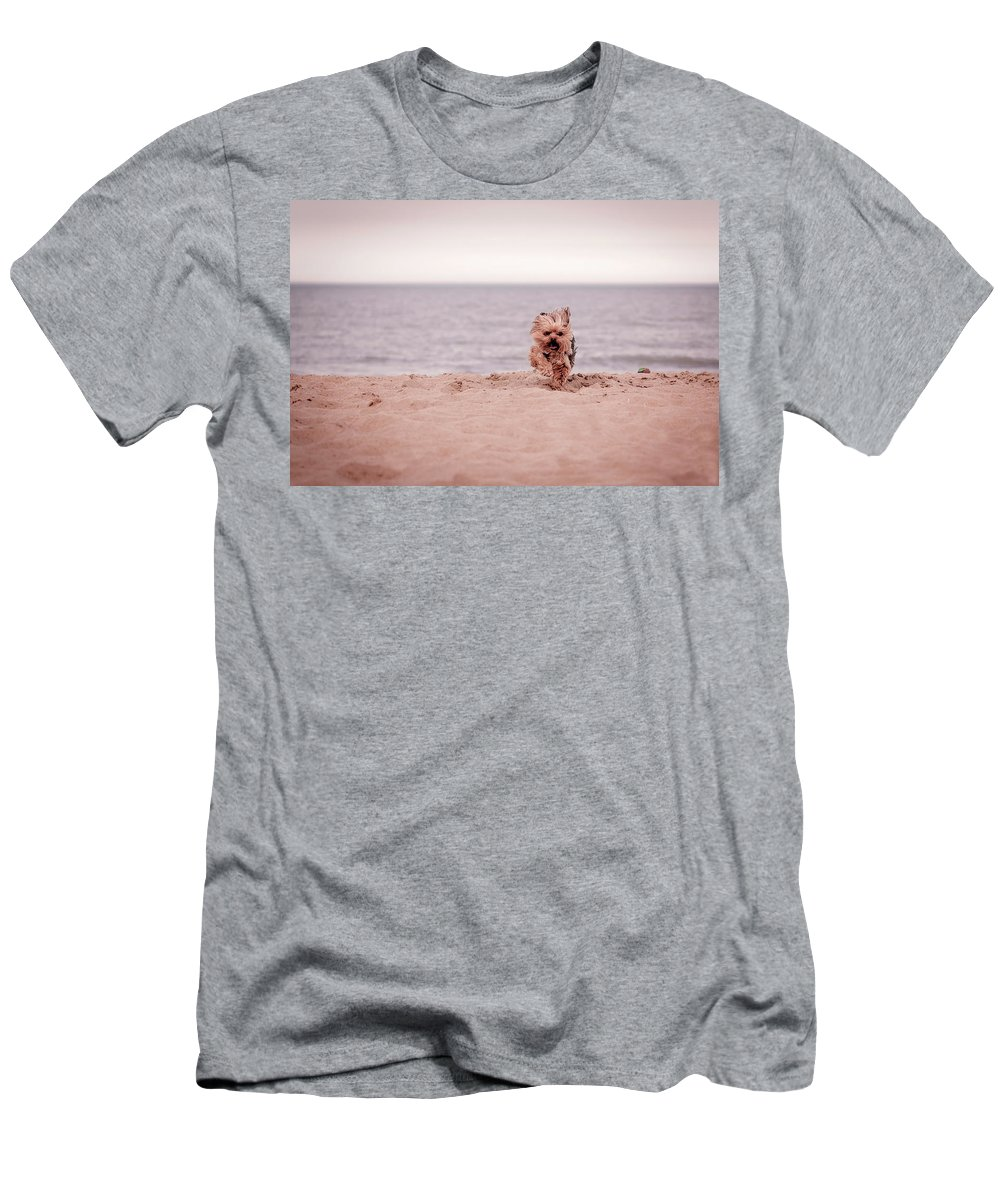 Active Men's T-Shirt (Athletic Fit) featuring the photograph York Dog Playing On The Beach. by Peter Lakomy