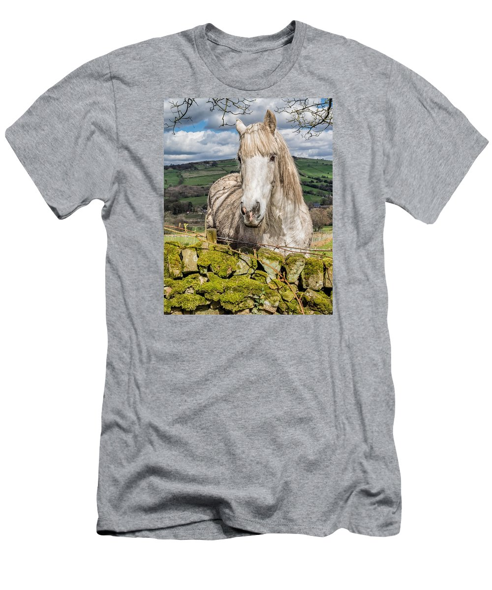 Birds & Animals Men's T-Shirt (Athletic Fit) featuring the photograph Rustic Horse by Nick Bywater