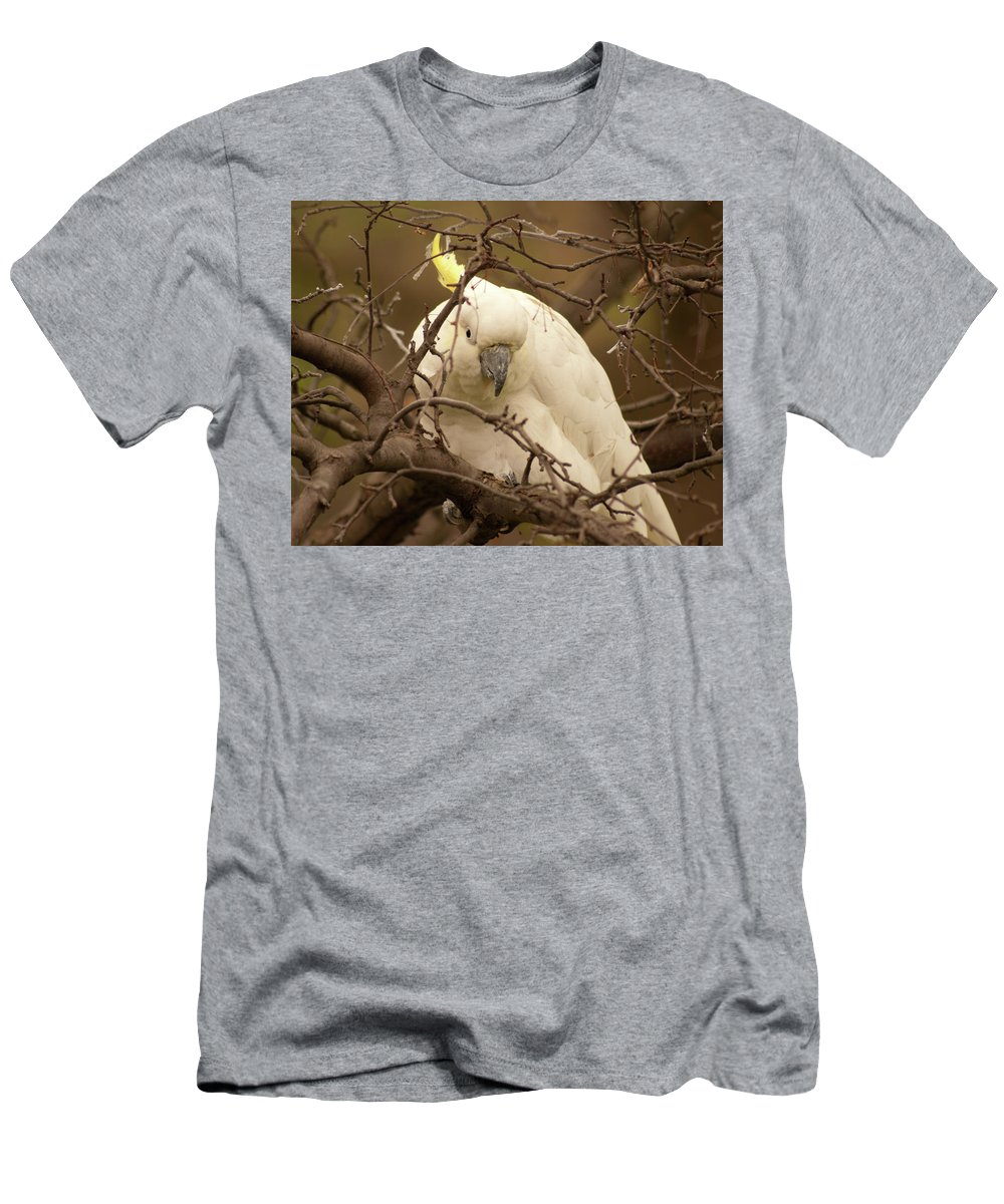 Cockatoo Men's T-Shirt (Athletic Fit) featuring the photograph Sulfur Crested Cockatoo by Diane Schuler