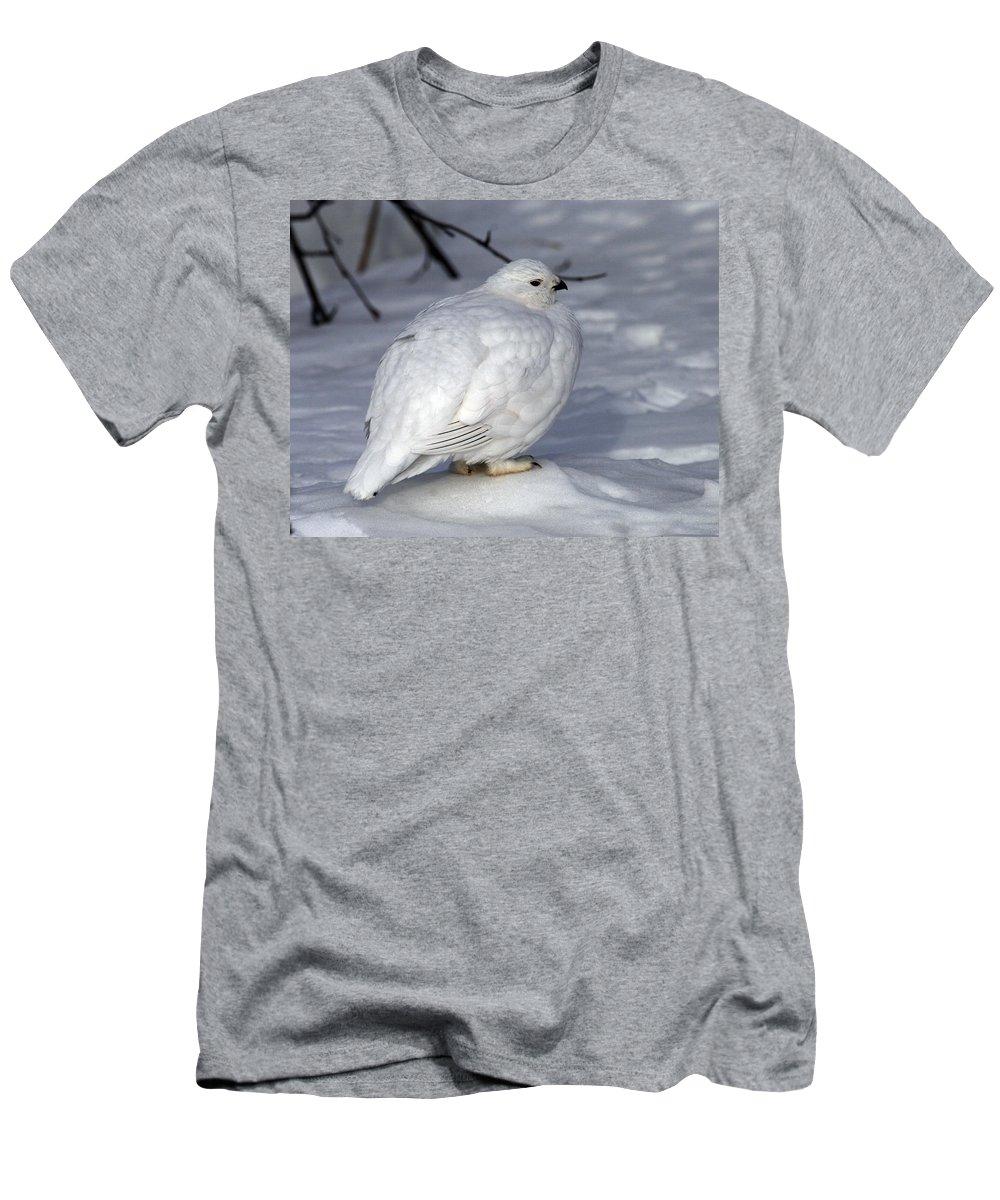 Doug Lloyd Men's T-Shirt (Athletic Fit) featuring the photograph Willow Ptarmigan by Doug Lloyd