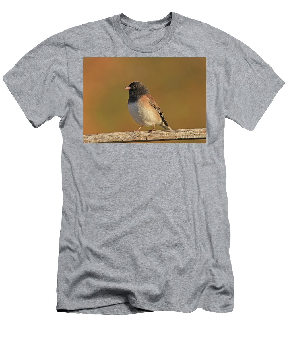 Dark-eyed Junco Men's T-Shirt (Athletic Fit) featuring the photograph Dark-eyed Junco by Gary Wing