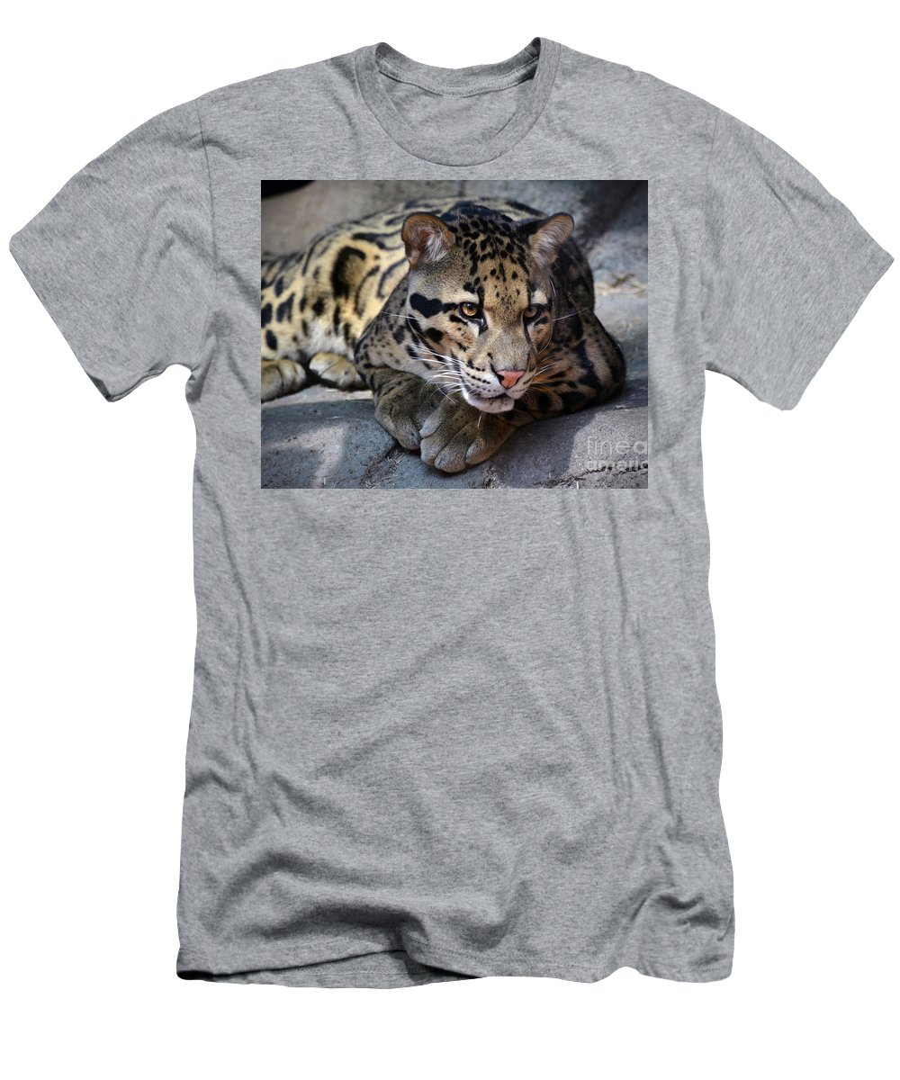 Leopard Cub Men's T-Shirt (Athletic Fit) featuring the photograph Clouded Leopard by Savannah Gibbs