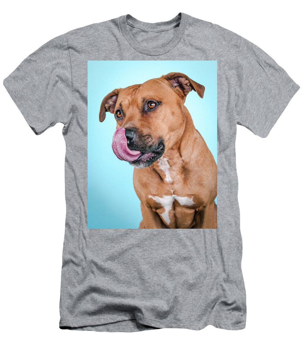 Dog Men's T-Shirt (Athletic Fit) featuring the photograph Gripper by Pit Bull Headshots by Headshots Melrose