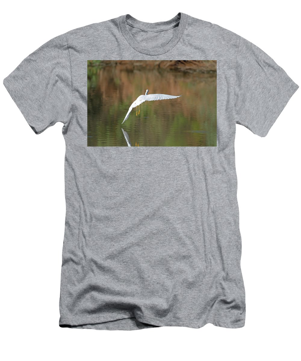 Snowy Men's T-Shirt (Athletic Fit) featuring the photograph Snowy Egret by Tam Ryan
