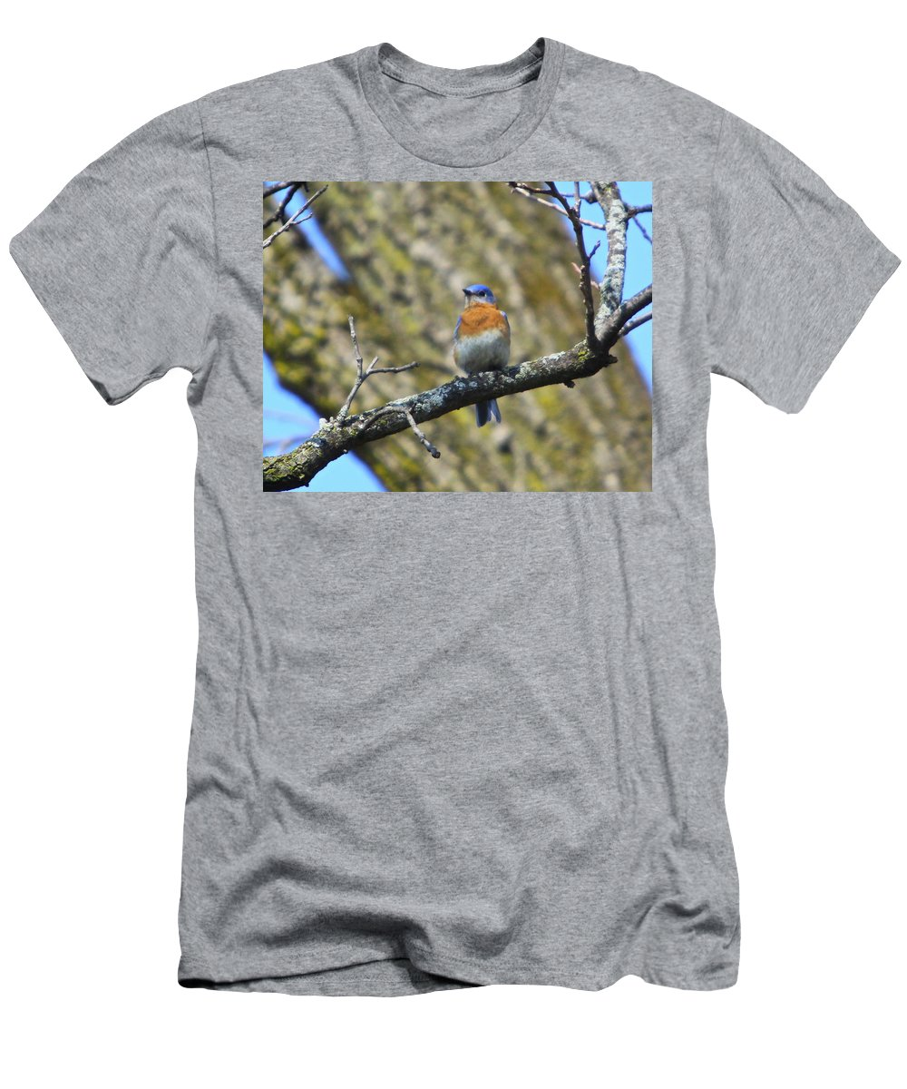 Bird Men's T-Shirt (Athletic Fit) featuring the photograph A Afternoon With Mr Blue Bird by Robert Pearson