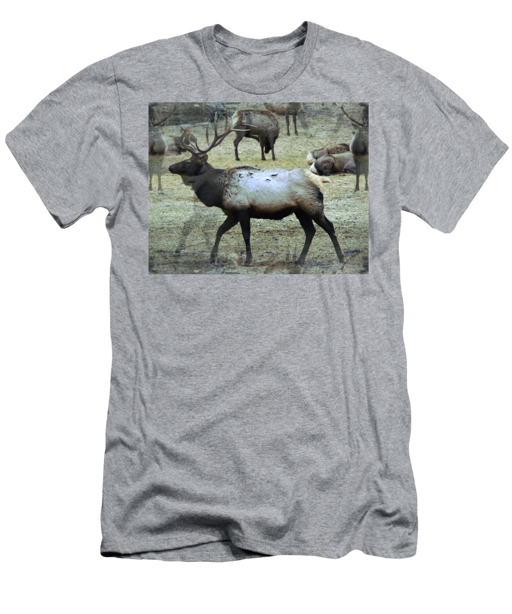 Elk T-Shirt featuring the photograph A Bull Elk by Jeff Swan