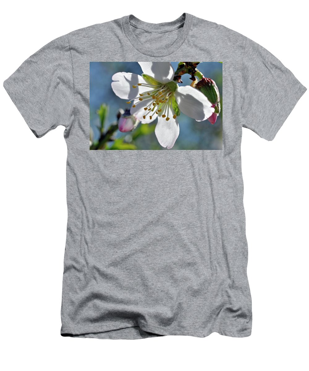 Almonds In Lachish 1 Men's T-Shirt (Athletic Fit) featuring the photograph Almonds In Lachish 1 by Dubi Roman
