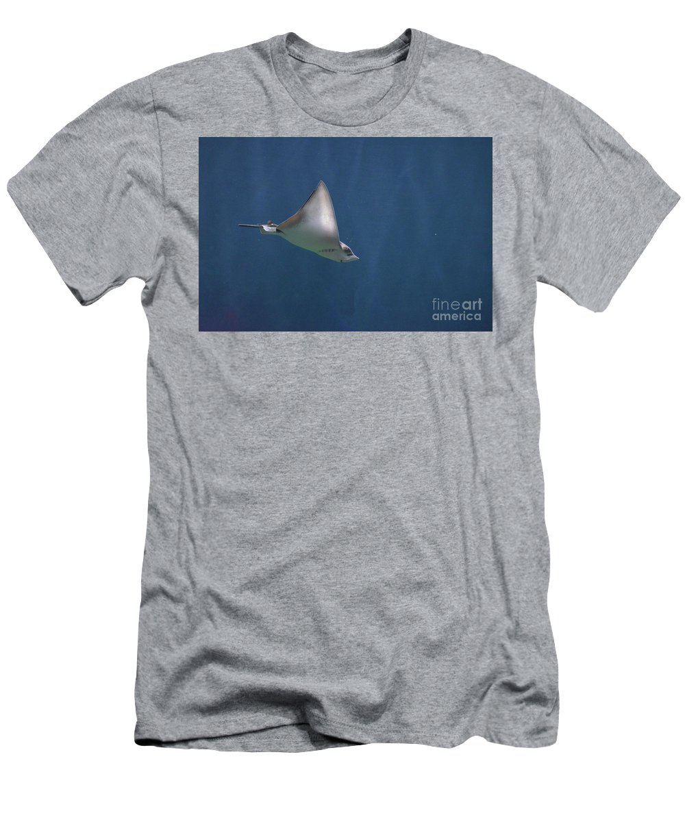 Stingray T-Shirt featuring the photograph Amazing Stingray Underwater In The Deep Blue Sea by DejaVu Designs